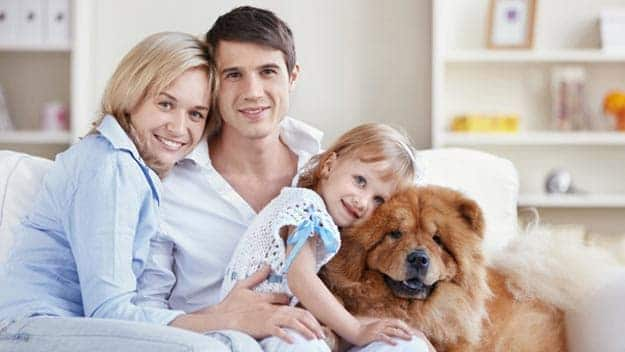 Wills & Trusts dog-young-family Direct Wills Wokingham